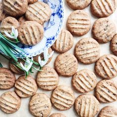 Nøddesmåkager Afternoon Snacks, Afternoon Tea, No Bake Desserts, Dessert Recipes, Danish Christmas, Danish Food, Cookies Et Biscuits, Christmas Cookies, Baked Goods
