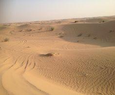 Camel riding in a Desert Safari, Dubai, United Arab Emirates. #traveling #ilovetraveling #travel #uae #unitedarabemirates #visitunitedarabemirates #iloveuae #tourism #turister #turistic #turisteandoando #turist #turista #turisteando #turism #travelphotography #ingersdubai #ingersuae...