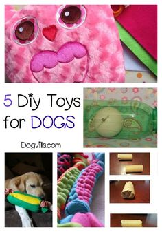 Why spend a fortune on store-bought toys for your pooch when you can make one of these clever DIY dog toys? Check them out!