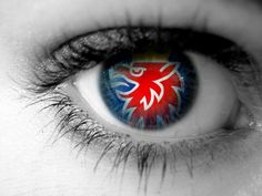 Eye for a Saab...