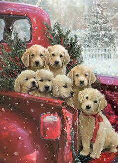 Christmas Jigsaw Puzzles, Christmas Puzzle, Christmas Puppy, Christmas Animals, Cozy Christmas, Vintage Christmas, Christmas Time, Christmas Scenes, Christmas Decor