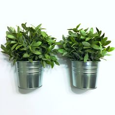 The Pindulgence // Ikea Artificial Plants and Galvenized Pots.  Kitchen and Bath decorations