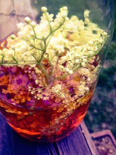 Cette recette est la définition parfaite de la cuisine sauvage : joindre l'utile à l'agréable avec les offrandes de la nature.Les fleurs de sureau, macérées dans du vinaigre, l'adoucissent et lui confèrent des propriétés médicinales, comme elles le feraient avec une tisane. A raison de 2 cuillères à soupe par jour, dans une vinaigrette par exemple, ce condiment santé joint l'utile à l'agréable.