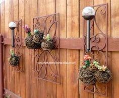 Succulents planted in wicker balls and wired to wrought iron.