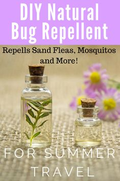 DIY Natural Bug repellent for mosquitos, sand fleas, and more critters. This worked on my trip to the Caribbean and I use every summer. It is so easy to make with essential oils including lavender, tea tree and get the rest of the recipe on the blog.