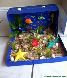 Making a ocean diorama is a fun way to learn about life in the sea. These under the sea dioramas are fun to make and look great. Ocean Projects, Animal Projects, School Projects, Projects For Kids, Crafts For Kids, Shoe Box Diorama, Diorama Shoebox, Diorama Ideas, Ocean Diorama