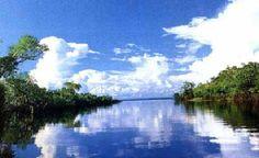 Amazonia, Brazil.