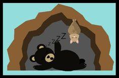Young & Lively Kindergarten: Winter: Hibernate, Migrate, or Stay Active? Winter Fun, Winter Theme, Winter Ideas, Winter Craft, Animals That Hibernate, Animal Adaptations, Bear Theme, Preschool Themes, Preschool Crafts