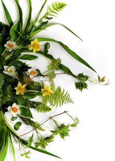spring greens (mary jo hoffman)