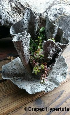 This is a Draped Hypertufa, small size, with drip catcher planted with succulents. It is made of re-cycled cloth and a concrete slurry.