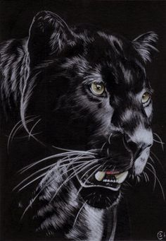 I like the idea of a panther maybe instead of an african god or goddess, but I'm not sure how it would mesh with everything else. Black Panther Drawing, Black Panther Cat, Black Panther Tattoo, Black Art Tattoo, Tattoo Art, Big Cats, Cool Cats, Beautiful Cats, Animals Beautiful