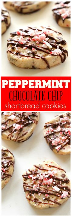 Peppermint Chocolate Chip Shortbread Cookies - a buttery cookie with mini chocolate chips and candy canes. the-girl-who-ate-everything.com