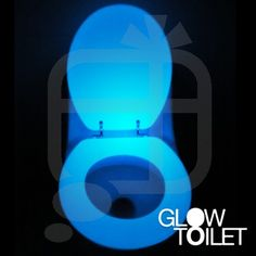 Glow in the Dark Novelty Toilet Seat. lol