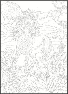 Color By Number For Adults: Horses - Hledat Googlem