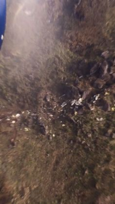 31 October - Puncak Regency Administration (leased from Trigana Air Service) DHC-4T Caribou Cargo plane (PK-SWW) crashes into a mountain side near Ilaga Airport, Indonesia. Killing all 4.