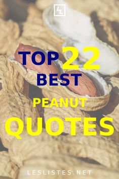 Peanut butter and jelly sandwiches are one of the most American foods. With that in mind, check out the top 22 peanut quotes. #peanut Aldi Grocery Store, Peanuts Quotes, Thanksgiving This Year, Healthy Cereal, Peanut Allergy, Great Inventions, Multigrain, Natural Peanut Butter, American Food