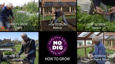 Introduction to Charles Dowding videos, easier ways to grow great veg