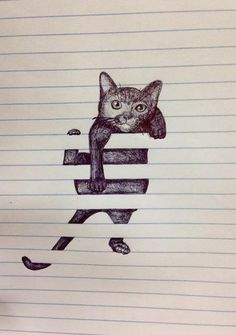 Just Some Scribbles | Cat, Drawing, Image, Kitten, Paper | Funny Pictures | LOL Pics