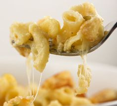 creamy spiced mac and cheese