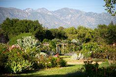 scenic wedding party location Descanso Gardens