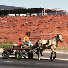 This is also Cape Town parts of the community still use horses for the daily business Horse Transport, Public Transport, World Of Wanderlust, Horse Cards, Outdoor Life, Cape Town, Old School, South Africa, Road Trip