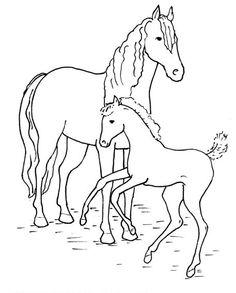 ausmalbilder tiere pferde – Ausmalbilder für kinder