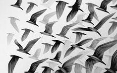 40 Black And White Wallpapers Ideas Black And White Wallpaper White Wallpaper Black And White