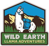 Llama trekking in New Mexico's pristine wilderness, near Taos and Santa Fe. Single and multi-day llama trekking adventures for all fitness levels. Llama Arts, Taos New Mexico, Land Of Enchantment, Day Hike, Family Adventure, Art Logo, Santa Fe, Travel Usa, Trekking
