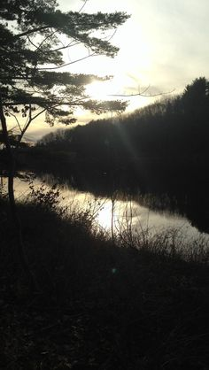 Penobscot river on Indian Island