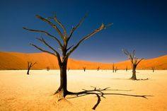 Rondreis Namibië | TravelBird