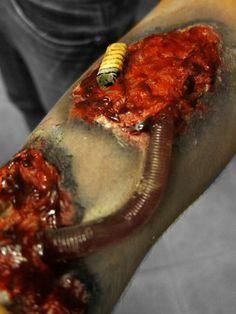 maggots eating flesh - photo #9