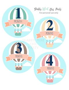 Baby Monthly Stickers.Hot Air Balloon Baby Stickers. Baby Girl Milestone Stickers.First Year Belly Stickers.INSTANT DOWNLOAD. - pinned by pin4etsy.com