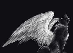 Sketched black wolf with white wings.  JM.