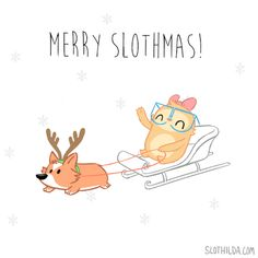 Wishing you a Merry Slothmas and a happy slow year! Merry Christmas Gif, Christmas Messages, Merry Christmas And Happy New Year, Xmas, Birthday Corgi, 10th Birthday, Cute Sloth, Tropical, Sarcastic Quotes