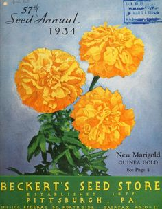 Seed annual  1934