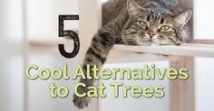 5 cool Alternativy k Cat stromy | eBay