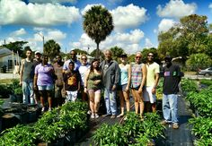 Visiting Mr Bosley & the Urban Growers at Henrietta Bridge Farm