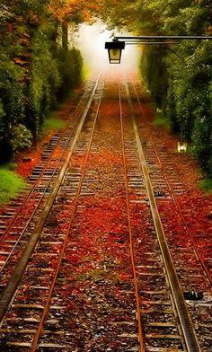 Railroad tracks in autumn..
