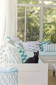 I love sun rooms! The black kitty is a great addition. Imagine that black fur all over tho!