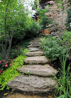 Breathtaking Walkway & Patio Designs - liking the small trees instead of just perennials!