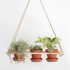Make this hanging planter to display multiple plants!