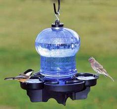 Hanging birdbath/waterer