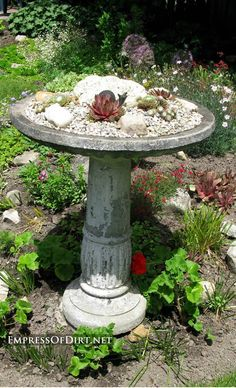 Broken bird bath? Plant it! | Bird bath planter with succulents and stones
