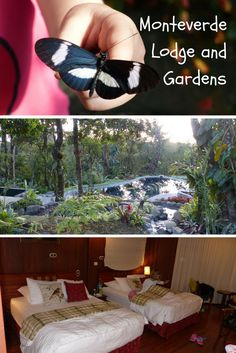 Monteverde Loge and Gardens - In die Landschaft eingebettete Anlage im Einklang mit der Natur und einem unglaublich leckeren Frühstück