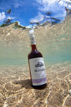 #koloarum #darkrum #rum #kauai #hawaii #underwater