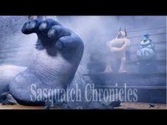 Sasquatch Chronicles SC EP: 107 Terrorized By Aggressive Giants [Bigfoot...