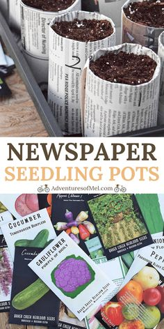 How to make your own newspaper seedling pots for starting seeds indoors, along with tips and ideas for soil, supplies, and growing plants from seed. planting Starting Seeds Indoors with Newspaper Seedling Pots Hydroponic Gardening, Container Gardening, Gardening Tips, Gardening Supplies, Organic Gardening, Vertical Hydroponics, Permaculture Garden, Bucket Gardening, Kitchen Gardening