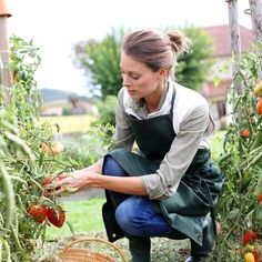 From charting the sun to arranging the layout, explore this article for tips on creating a kitchen garden in the tiniest of spaces.