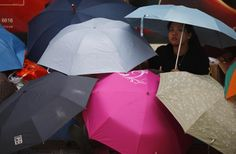 A protester sits under umbrellas as she blocks the main street to the financial Central district outside the government headquarters in Hong Kong, September 30, 2014.  REUTERS-Carlos Barria
