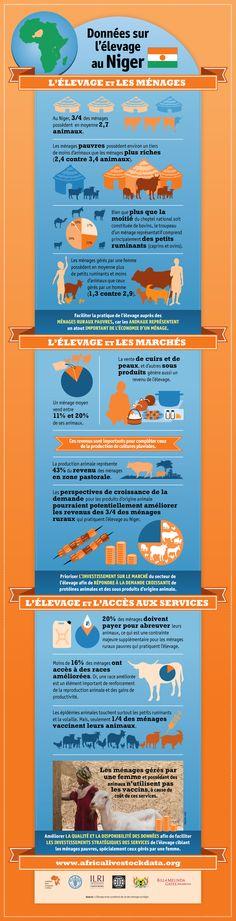 Infographie de la FAO : L'Élevage et les conditions de vie des ménages au Niger